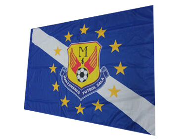 bandera-manzanaresfs