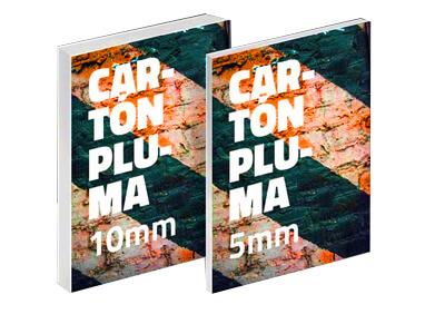 carton-pluma-economico