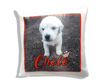 cojin-perro-cholo