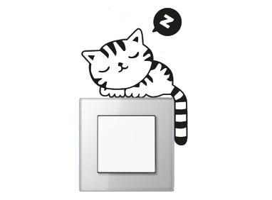 enchufe-gato